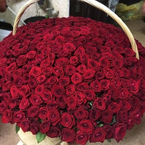 Купить на заказ Заказать 1001 роза с доставкой по Семей  с доставкой в Семее
