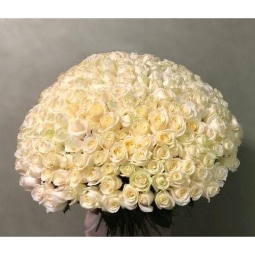 Купить на заказ Заказать 201 роза с доставкой по Семей  с доставкой в Семее